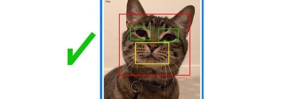 Doe-het-zelf-kattenluikje met gezichtsherkenning