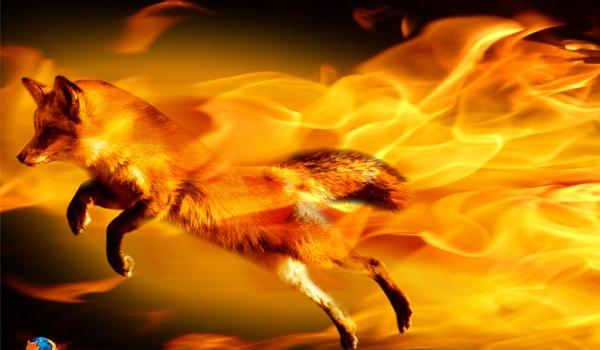 Firefox 13 te downloaden