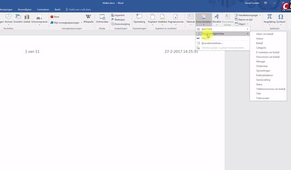 Gebruik velden in Word (2)