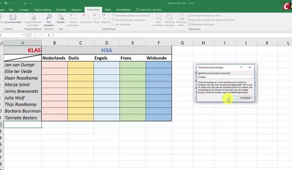 Werkblad in Excel beveiligen