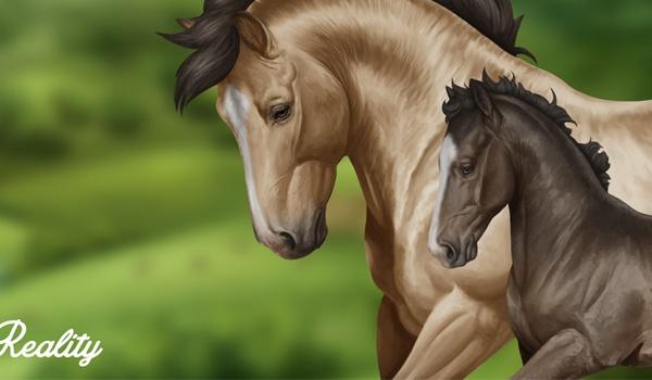Help Horse Reality aan een snelle gameserver