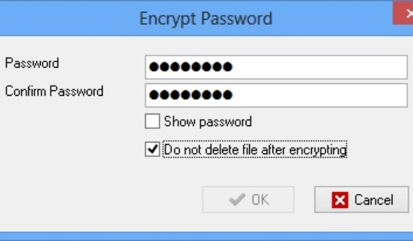 Documenten versleutelen met EncryptOnClick en File Lock