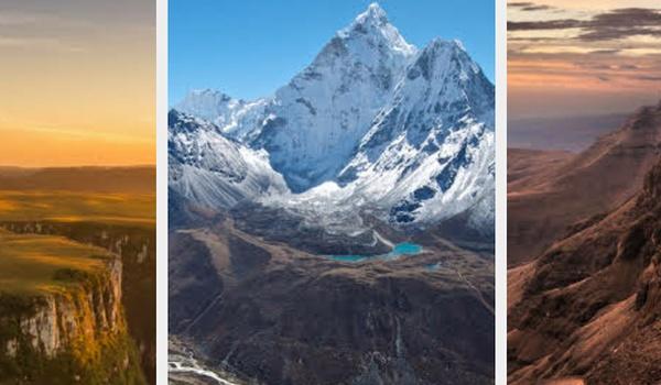 Achtergronden-app Google: elke dag nieuwe wallpaper