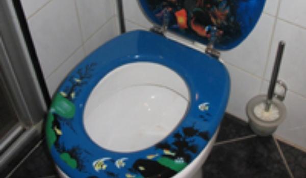 WhatsApp populair op toilet