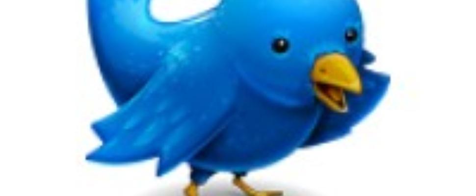 2009: Het jaar van de sociale netwerken