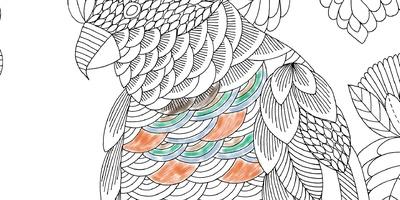 Bekend Millie Marotta's Colouring Adventures - Kleurboeken voor @UW28