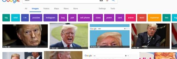 Wie op Google naar 'idioot' zoekt, vindt massaal Trump