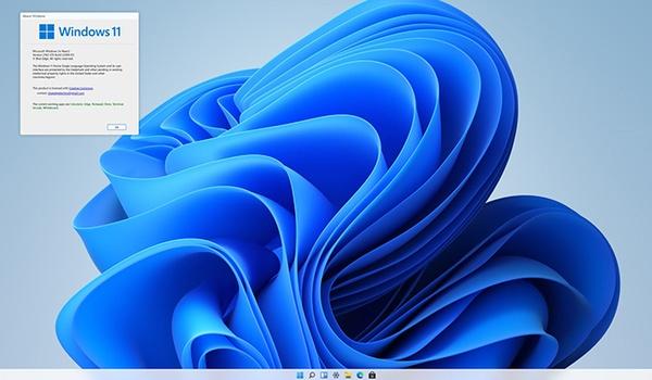 Probeer nagebootste Windows 11 uit in je browser