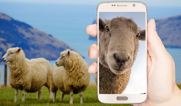 Google zet selfie-filters uit om vertekend zelfbeeld te voorkomen