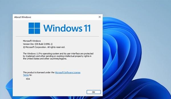 Google verwijdert links naar Windows 11-downloads uit zoekresultaten