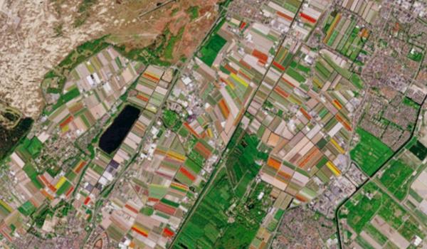 Tulpenvelden in bloei op satellietbeelden ESA