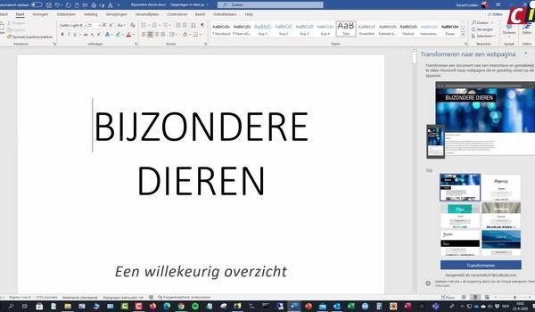 Word: Tekst omzetten naar Sway-presentatie