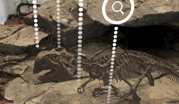 Famous Fossil - Kruip in de huid van een paleontoloog