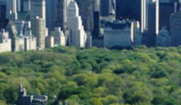 Central Park gaat draadloos