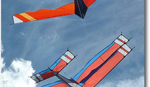 Nederlandse reissites regelmatig 'uit de lucht'