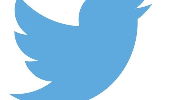 Tientallen miljoenen Twitter-accounts verwijderd