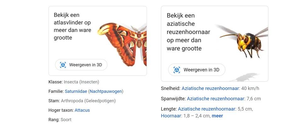 Brrrr... AR-insecten van Google in je huiskamer
