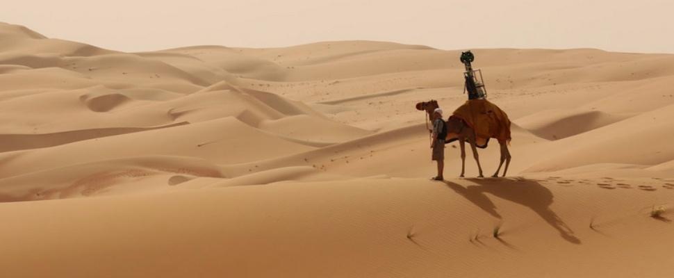 Dromedaris Brengt Woestijn In Kaart Voor Street View