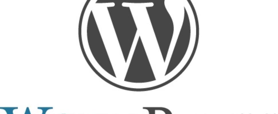 '25% van websites draait op WordPress'