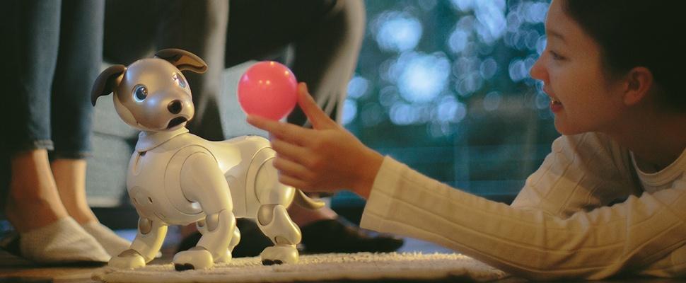 Robothondje Aibo terug van weggeweest