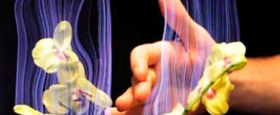 Disney's Botanicus Interacticus: Plant met touchbediening
