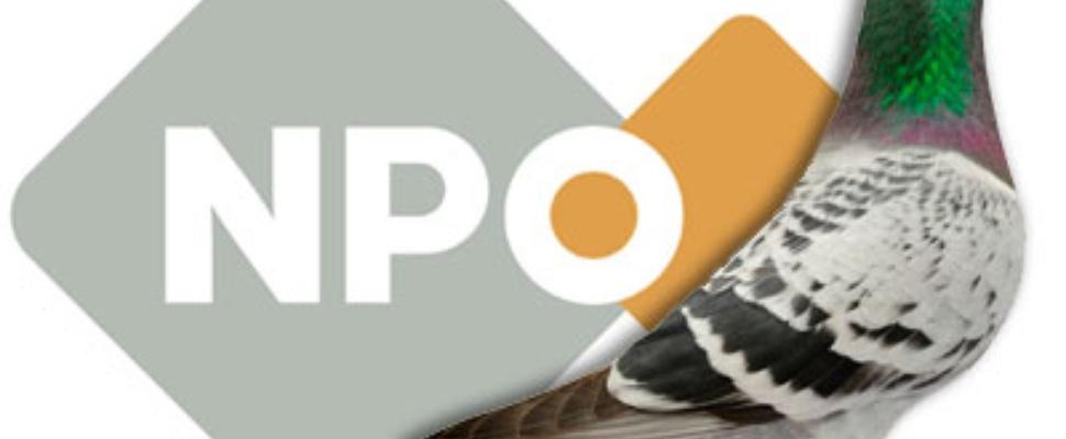 Publieke Omroep betaalt ton voor npo-url van postduiven-website