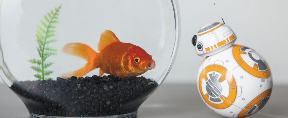 Kijk met BB-8 naar de nieuwste Star Wars-film