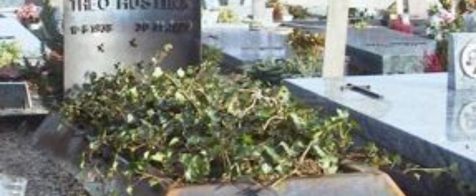 Eerste virtuele begraafplaats geopend